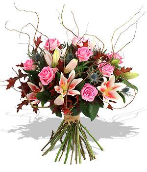 Výsledek obrázku pro květiny obrázky